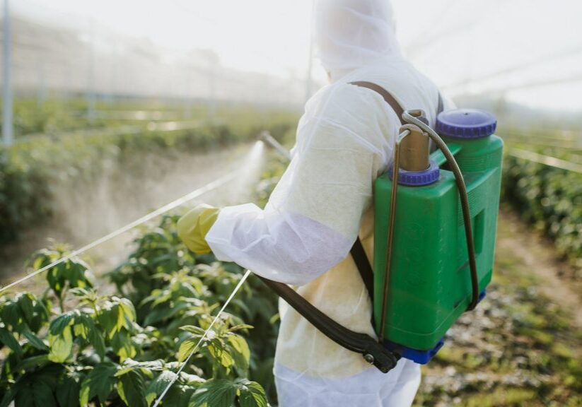 Herbicide Damage 1920x1080